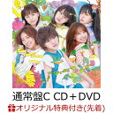 【イベント参加抽選&楽天ブックス限定先着特典】サステナブル (通常盤 CD+DVD Type-C) (生写真付き) [ AKB48 ]