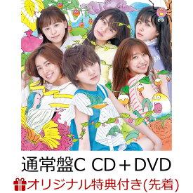 【楽天ブックス限定先着特典】サステナブル (通常盤 CD+DVD Type-C) (生写真付き) [ AKB48 ]