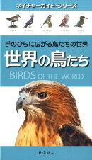 【謝恩価格本】世界の鳥たち