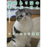 地図あり猫のまっぷーちんファースト写真集