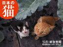 2019年カレンダー 日本の猫 [ 岩合 光昭 ]