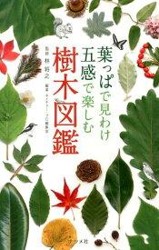 葉っぱで見わけ五感で楽しむ樹木図鑑 [ ネイチャー・プロ編集室 ]