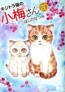 キジトラ猫の小梅さん 20