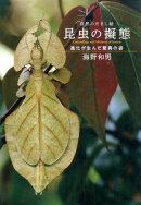 自然のだまし絵昆虫の擬態