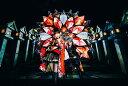 タイトル未定 (初回限定盤 CD+Blu-ray) [ angela ]