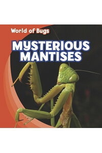 Mysterious_Mantises