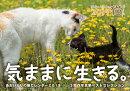あおいとりの猫カレンダー(2019)