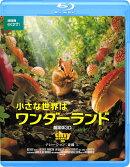 小さな世界はワンダーランド/劇場版3D【Blu-ray】