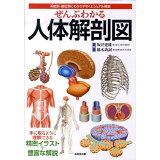 ぜんぶわかる人体解剖図