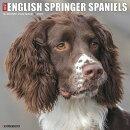 Just English Springer Spaniels 2020 Wall Calendar (Dog Breed Calendar)