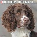 Just English Springer Spaniels 2020 Wall Calendar (Dog Breed Calendar) JUST ENGLISH SPRINGER SPANIELS [ Willow…