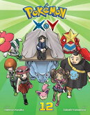 Pokemon X-Y, Vol. 12