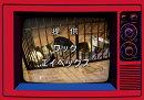 まめジャー (初回限定盤 CD+Blu-ray+スマプラ)
