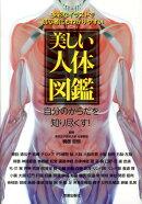 【謝恩価格本】美しい人体図鑑