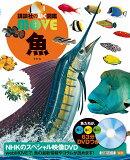 DVD付 魚