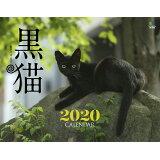 黒猫カレンダー(2020) ([カレンダー])
