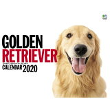 GOLDEN RETRIEVERカレンダー ([カレンダー])