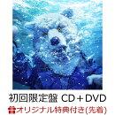 【楽天ブックス限定先着特典】INTO THE DEEP (初回限定盤 CD+DVD)(INTO THE DEEPステッカー(楽天ブックス ver.))