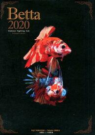 Betta(2020) Siamese Fighting fish [ 大美賀隆 ]
