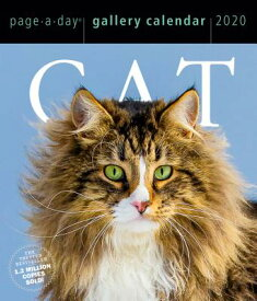 Cat Page-A-Day Gallery Calendar 2020 CAL-2020 CAT PAGE-A-DAY GALLER [ Workman Calendars ]