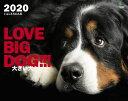 大きい犬カレンダー 壁掛け(2020)