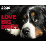 大きい犬カレンダー(2020) ([カレンダー])
