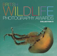 BritishWildlifePhotographyAwards:Collection5[StephanieHilborneObe]