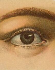 JOHN DERIAN PICTURE BOOK(H) [ . ]