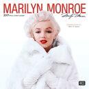 Marilyn Monroe 2017 Square Faces (Foil)