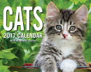 Cats 2017 Mini Day-To-Day Calendar