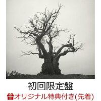 ベスト アルバム セカオワ