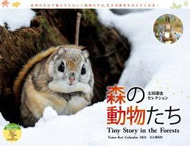 太田達也セレクション森の動物たちTiny Story in the Forest(2021) ([カレンダー])