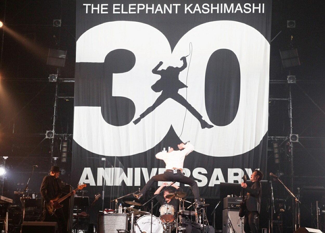 "30th ANNIVERSARY TOUR ""THE FIGHTING MAN"" FINALさいたまスーパーアリーナ(初回限定盤) [ エレファントカシマシ ]"