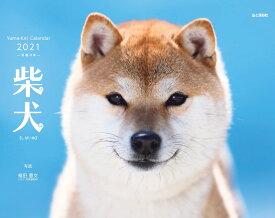 柴犬(2021) ([カレンダー])
