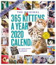 365 KITTENS-A-YEAR WALL CALENDAR 2020