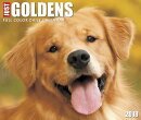 Just Goldens 2018 Box Calendar (Dog Breed Calendar)