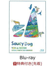 【先着特典】「YAON de WAOOON」2019.4.30 日比谷野外音楽堂(メンバー直筆サイン入りオリジナルポストカード付き)【Blu-ray】 [ Saucy Dog ]