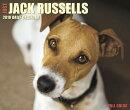 Just Jack Russells 2018 Box Calendar (Dog Breed Calendar)