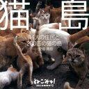 猫島 14人の住民と200匹の猫の島ー愛媛・青島