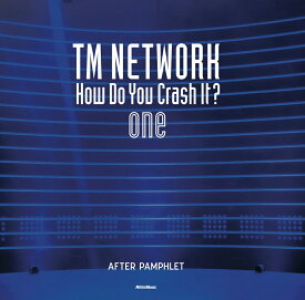 TM NETWORK How Do You Crash It? one After pamphlet