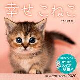 ましかく子猫カレンダー幸せこねこ ([カレンダー])