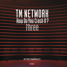 TM NETWORK How Do You Crash It? three AFTER PAMPHLET (リットーミュージック)