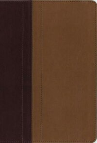 NIV,QuestStudyBible,ImitationLeather,Burgundy/Tan,Indexed:TheQuestionandAnswerBibleNIVQUESTSTUDYBIBLEIMITBUR[ChristianityTodayIntl]
