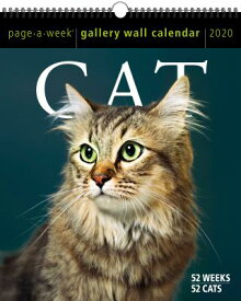 Cat Page-A-Week Gallery Wall Calendar 2020 CAL-2020 CAT PAGE-A-WEEK GALLE [ Workman Calendars ]