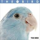 (ミニ・魚眼)THE BIRD 2015年 カレンダー