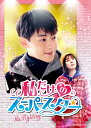 私だけのスーパースター~Mr. Fighting~ DVD-BOX1 [ ダン・ルン ]