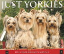 Just Yorkies 2018 Box Calendar (Dog Breed Calendar)