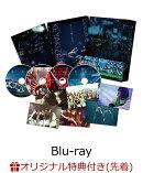 【楽天ブックス限定先着特典】僕たちの嘘と真実 Documentary of 欅坂46 Blu-rayコンプリートBOX (4 枚組)(完全生産…