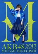 (壁掛)AKB48 峯岸みなみ B2カレンダー 2017【楽天ブックス限定特典付】