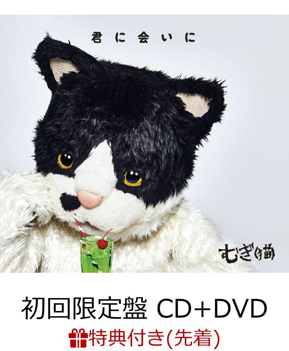 【先着特典】君に会いに (初回限定盤 CD+DVD) (手書きステッカー付き) [ むぎ(猫) ]
